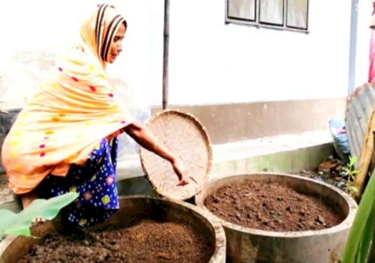 সীতাকুণ্ডের নারীরা স্বাবলম্বী কেঁচো সার উৎপাদন করে